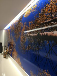 Attractive Custom Wall Mural